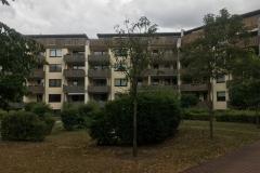 Erziehungsfachstelle-in-Dessau-2