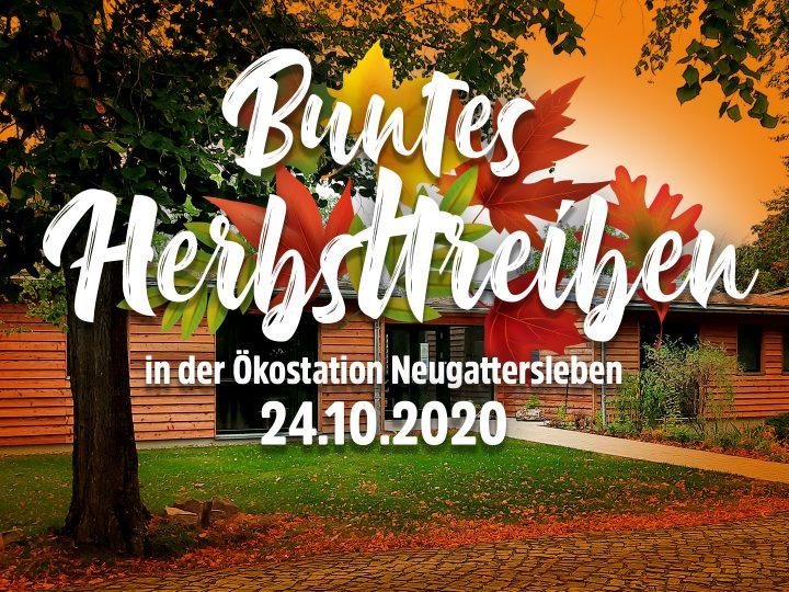 Herbsttreiben Event Titel