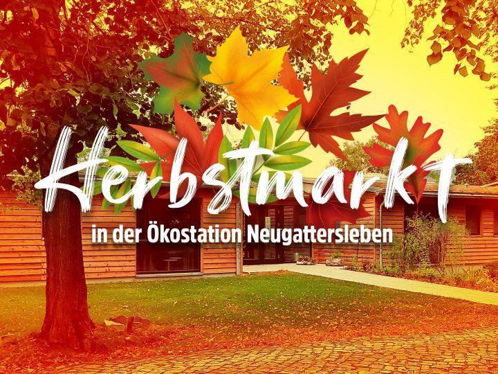 Herbsttreiben-Event-Titel-720×540